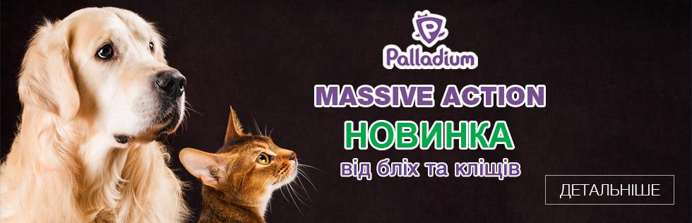 Новинка - Palladium Massive Action