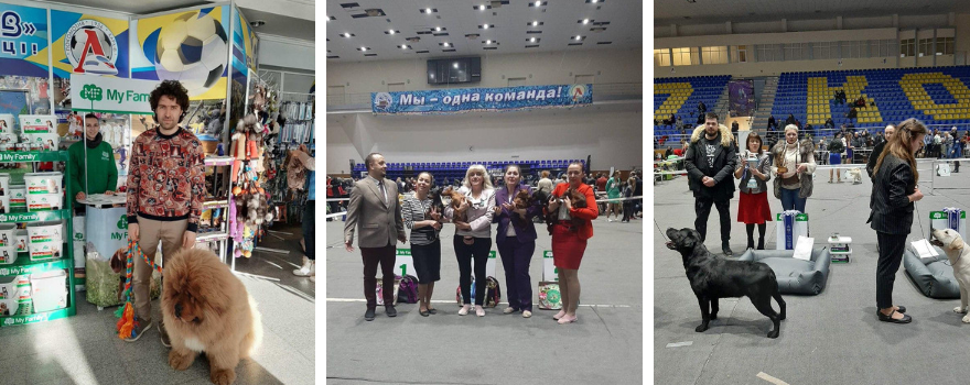 Зимовий кубок мера Харкова 2020 САС UA та Сузiр'я Снiговіх псiв CACIB