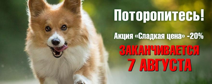 """Акция """"Сладкая цена"""" завершается 7 августа!"""