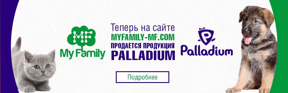 My Family и продукция Palladium