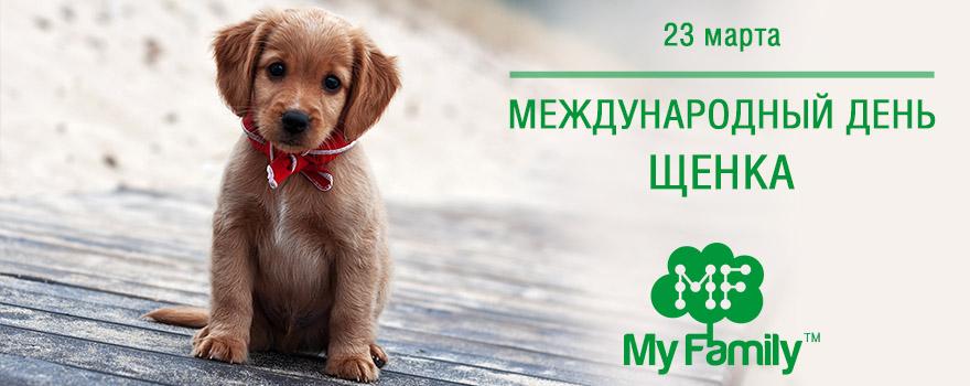 Международный день щенка!