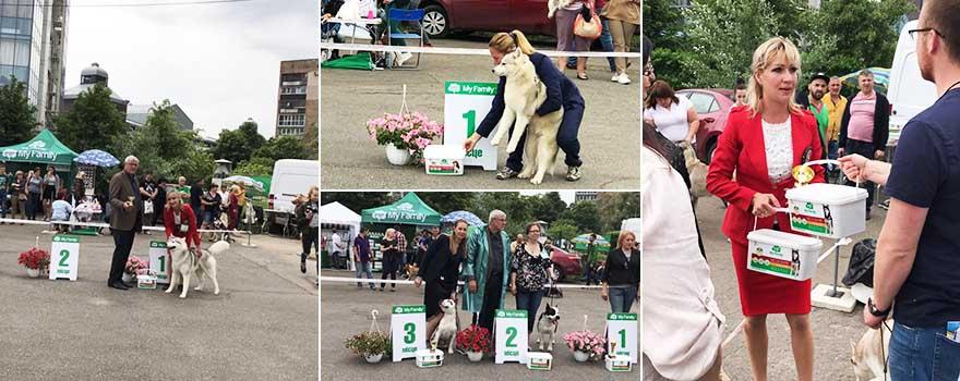 Международная выставка собак всех пород ранга FCI-CACIB
