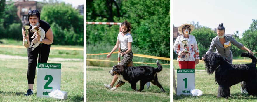 Національна виставка собак всіх порід 2 * САС Харкiв